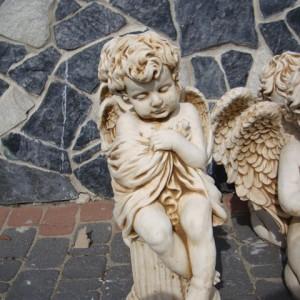 448-aniol-na-kolumnie